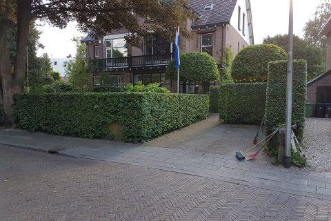 Haag snoeien